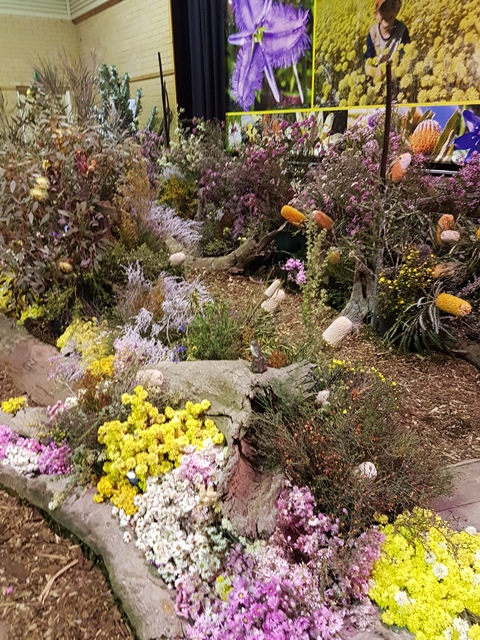 Wildflower Show display 2